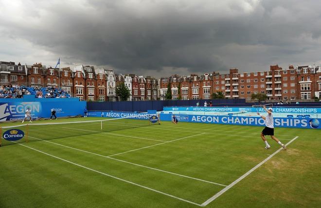 Superficie tenis hierba